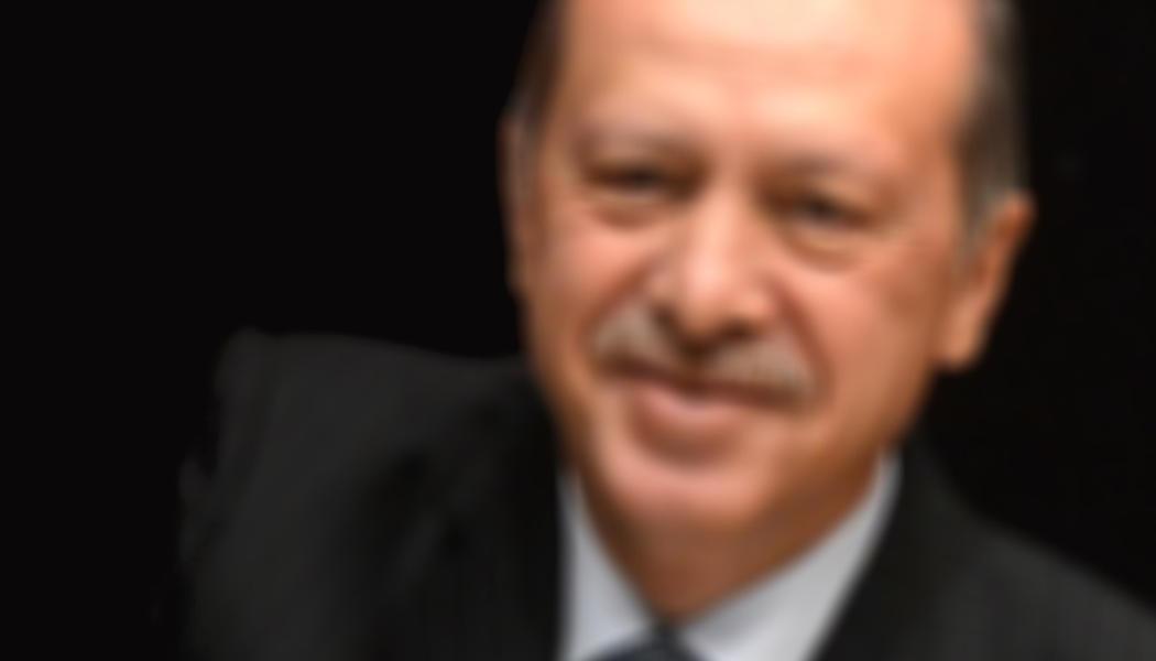 Erdogan - pelzblog