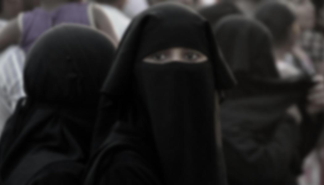 Islam - verschleierte Frau - pelzblog